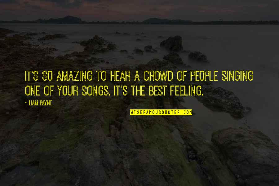 The Most Amazing Feeling Quotes By Liam Payne: It's so amazing to hear a crowd of