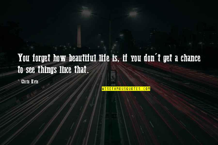 The Most Beautiful Things In Life Quotes By Chris Kyle: You forget how beautiful life is, if you