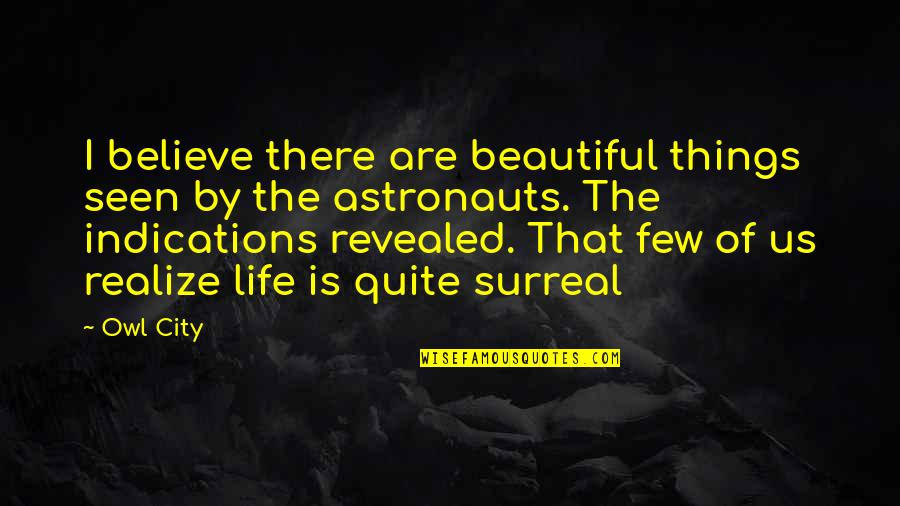 The Most Beautiful Things In Life Quotes By Owl City: I believe there are beautiful things seen by