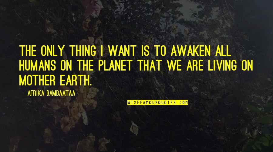 The Mother Earth Quotes By Afrika Bambaataa: The only thing I want is to awaken