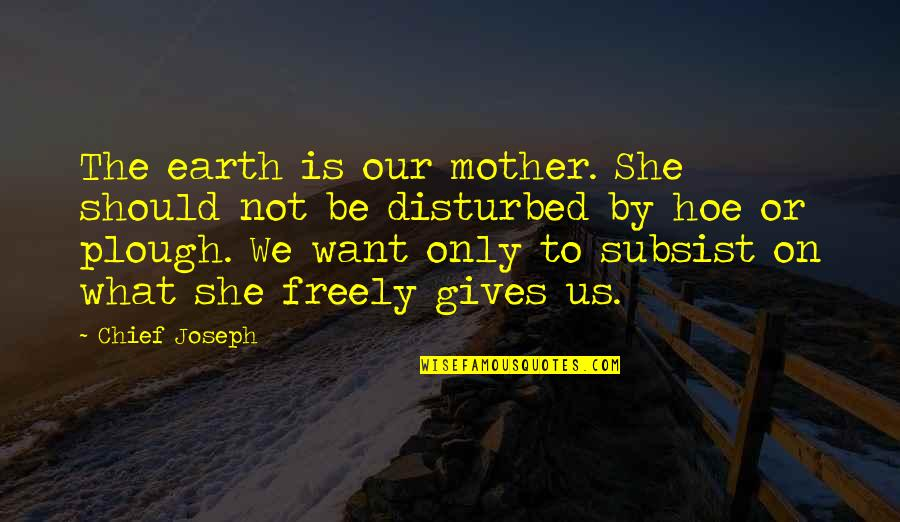 The Mother Earth Quotes By Chief Joseph: The earth is our mother. She should not