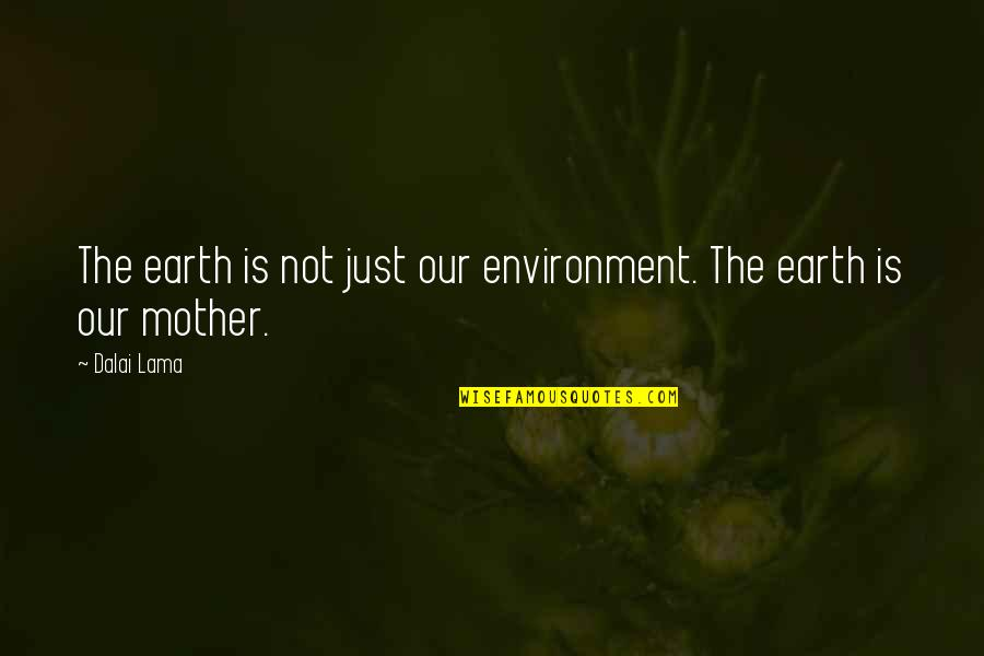 The Mother Earth Quotes By Dalai Lama: The earth is not just our environment. The
