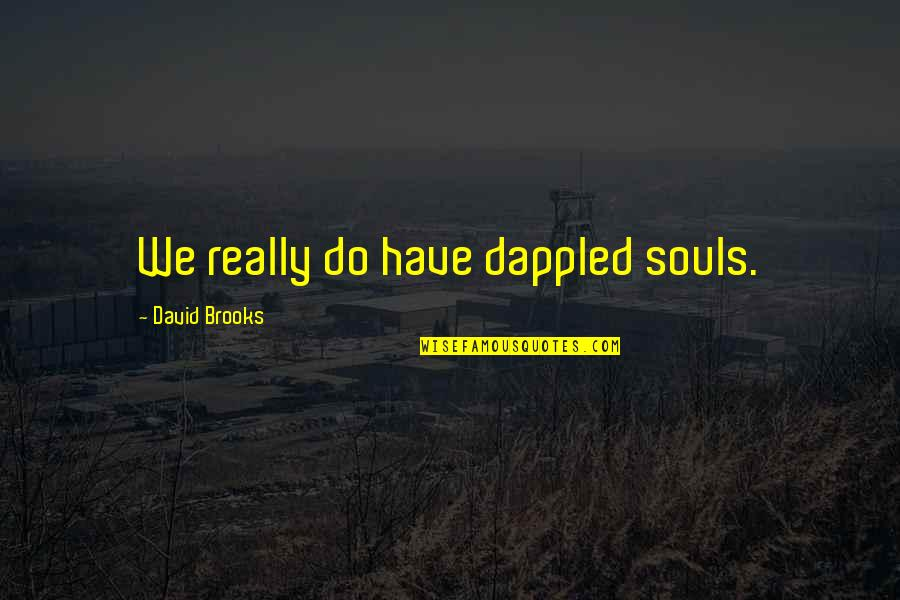 The Name Jennifer Quotes By David Brooks: We really do have dappled souls.