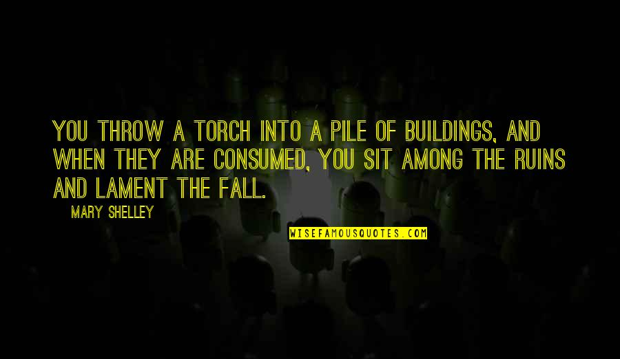The Name Jennifer Quotes By Mary Shelley: You throw a torch into a pile of