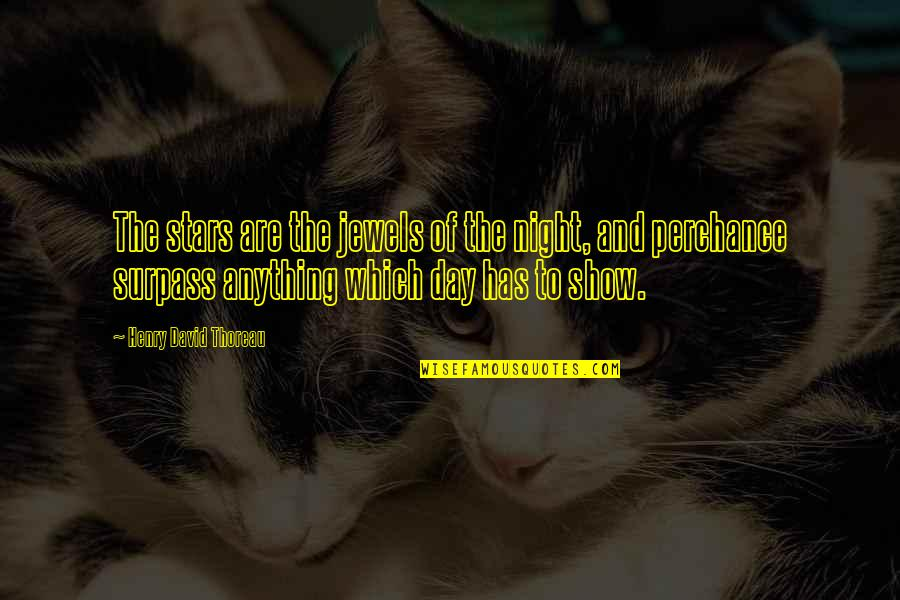 The Night And Stars Quotes By Henry David Thoreau: The stars are the jewels of the night,