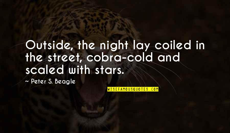 The Night And Stars Quotes By Peter S. Beagle: Outside, the night lay coiled in the street,