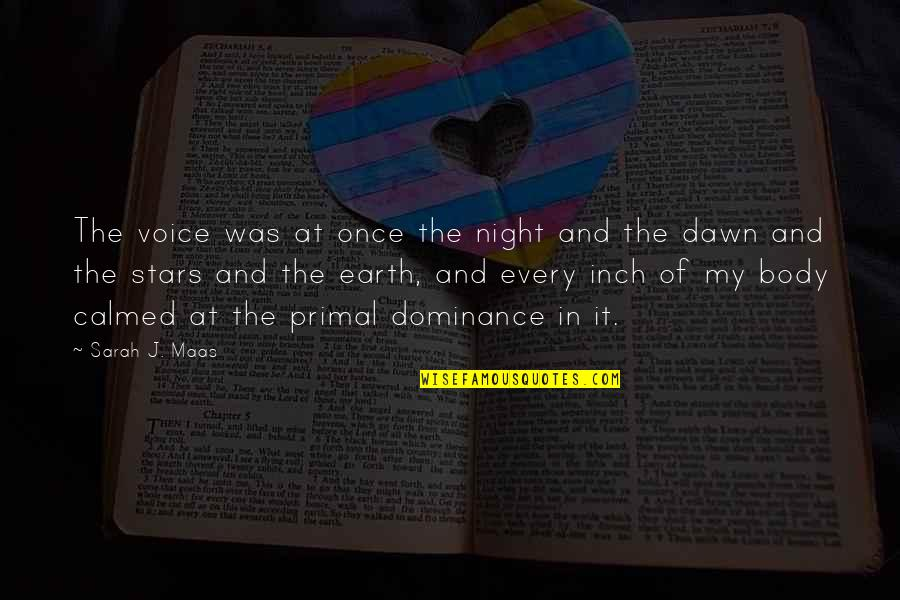 The Night And Stars Quotes By Sarah J. Maas: The voice was at once the night and