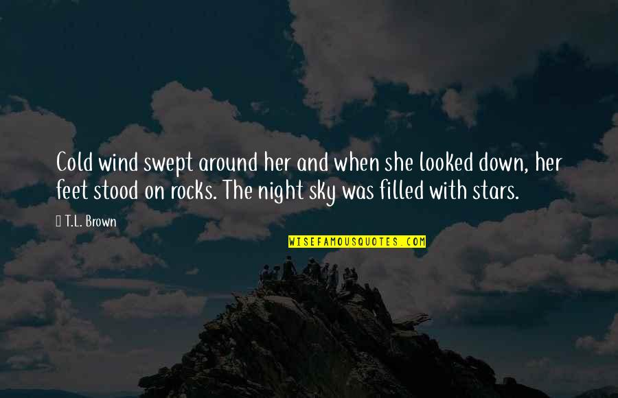 The Night And Stars Quotes By T.L. Brown: Cold wind swept around her and when she