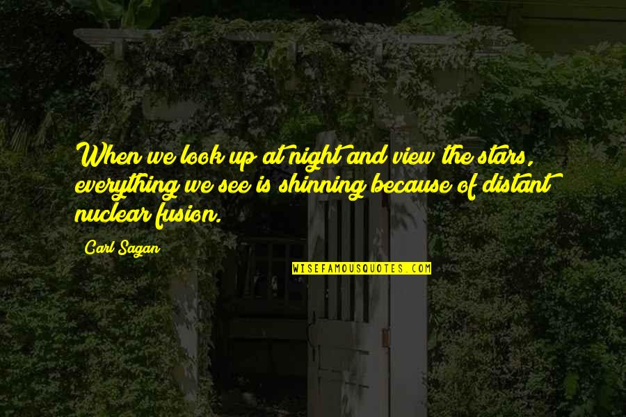 The Night Sky And Stars Quotes By Carl Sagan: When we look up at night and view