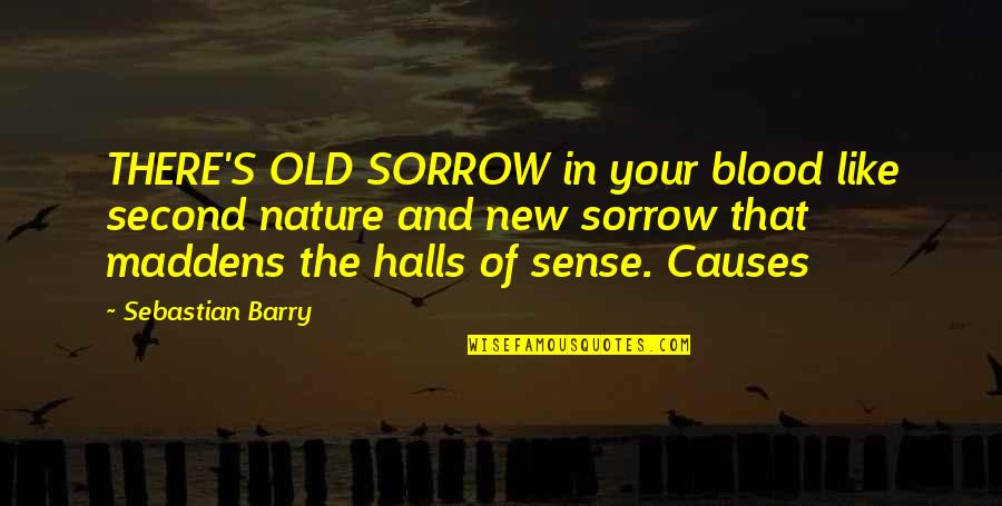 The Old Quotes By Sebastian Barry: THERE'S OLD SORROW in your blood like second