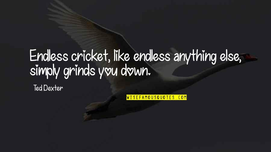 The Oldest Sister Quotes By Ted Dexter: Endless cricket, like endless anything else, simply grinds