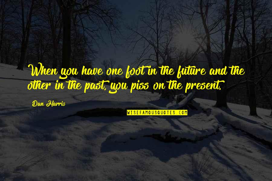 The Past Present Future Quotes By Dan Harris: When you have one foot in the future