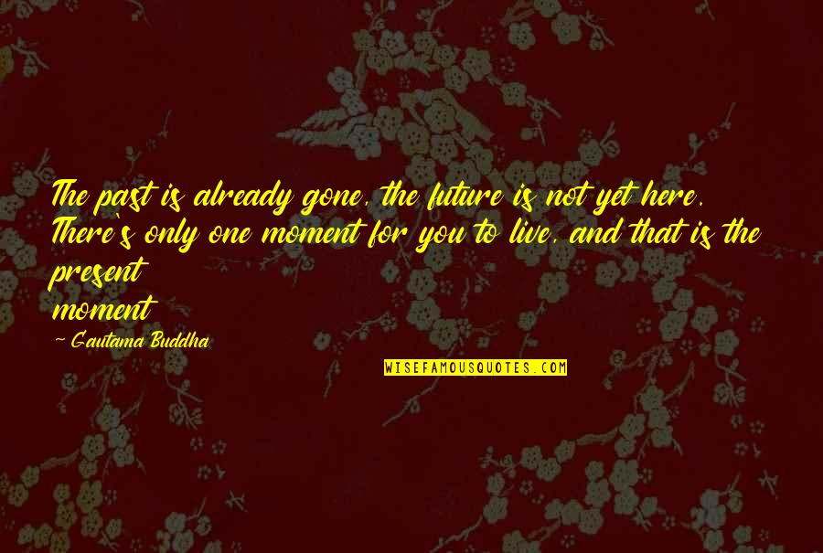 The Past Present Future Quotes By Gautama Buddha: The past is already gone, the future is