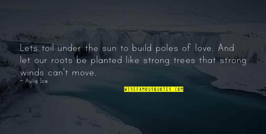 The Poor And Needy Quotes By Auliq Ice: Lets toil under the sun to build poles