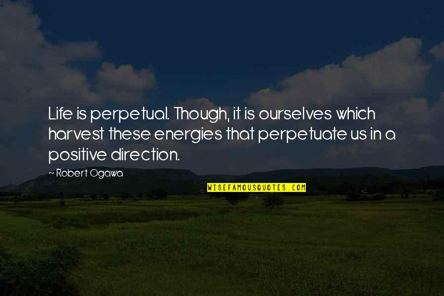 The Power Rangers Quotes By Robert Ogawa: Life is perpetual. Though, it is ourselves which