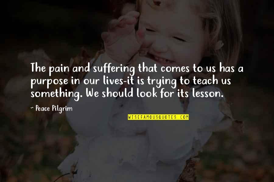 The Purpose Of Suffering Quotes By Peace Pilgrim: The pain and suffering that comes to us