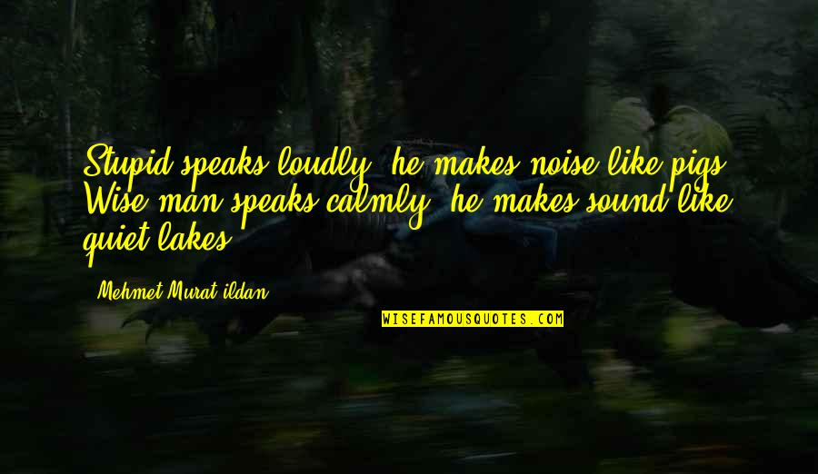 The Quiet Man Quotes By Mehmet Murat Ildan: Stupid speaks loudly; he makes noise like pigs!