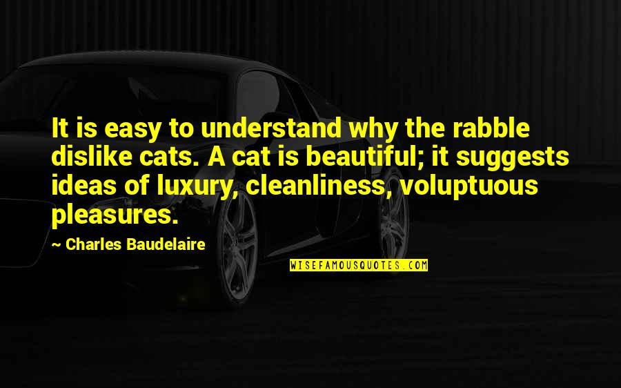 The Rabble Quotes By Charles Baudelaire: It is easy to understand why the rabble