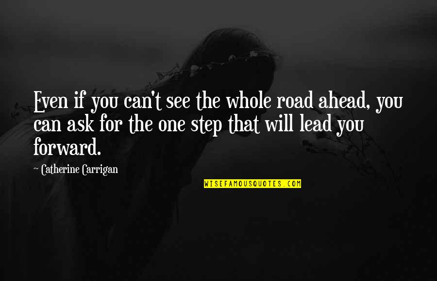 The Road Ahead Quotes By Catherine Carrigan: Even if you can't see the whole road