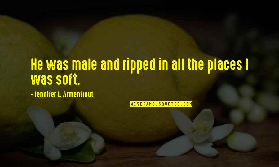 The Savoy Hotel Quotes By Jennifer L. Armentrout: He was male and ripped in all the