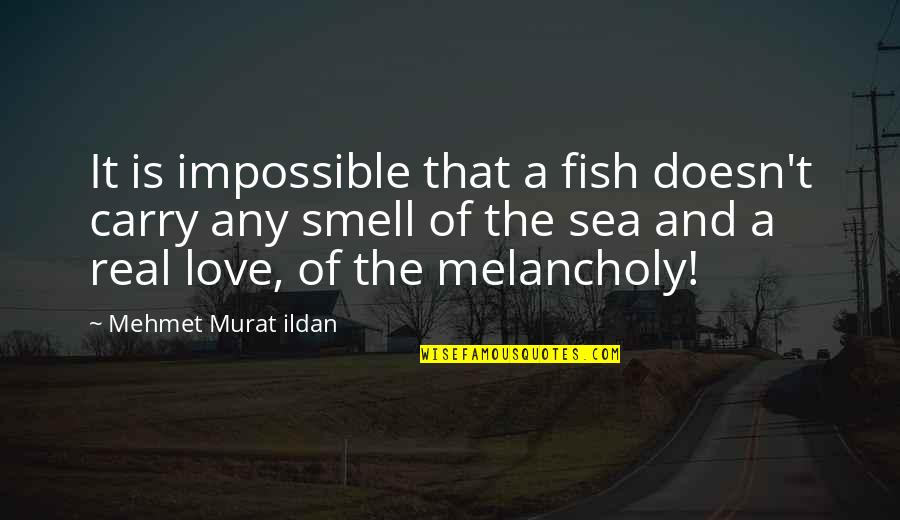 The Sea And Love Quotes By Mehmet Murat Ildan: It is impossible that a fish doesn't carry