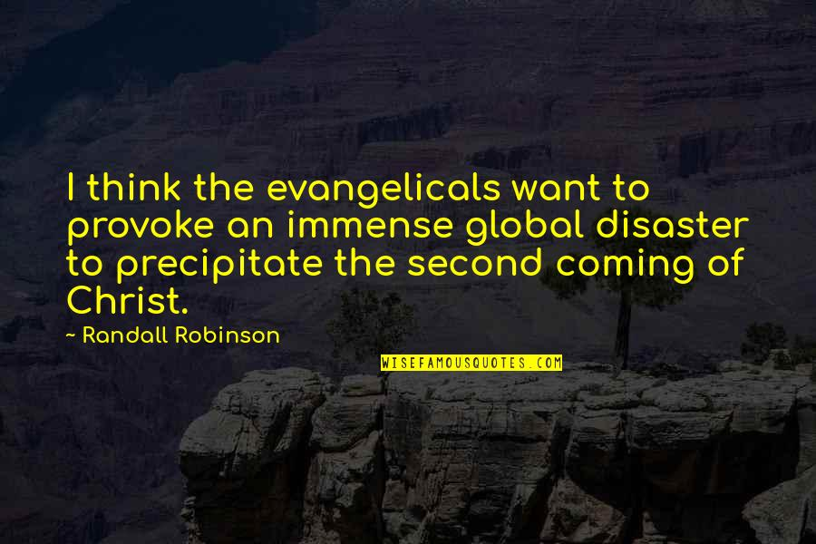 The Second Coming Of Christ Quotes By Randall Robinson: I think the evangelicals want to provoke an