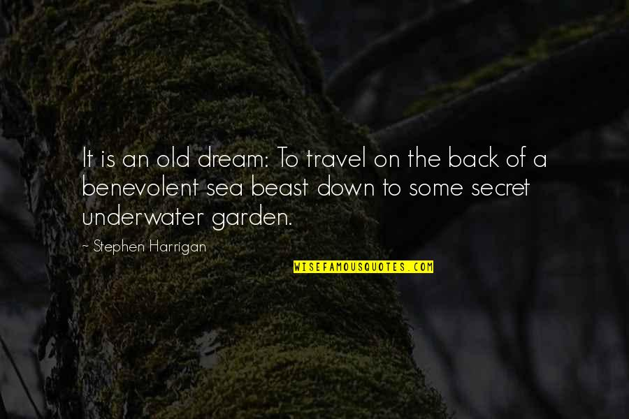 The Secret Garden Quotes By Stephen Harrigan: It is an old dream: To travel on