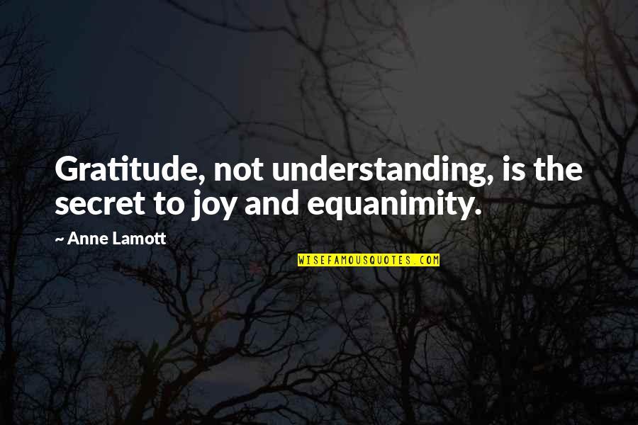 The Secret Quotes By Anne Lamott: Gratitude, not understanding, is the secret to joy