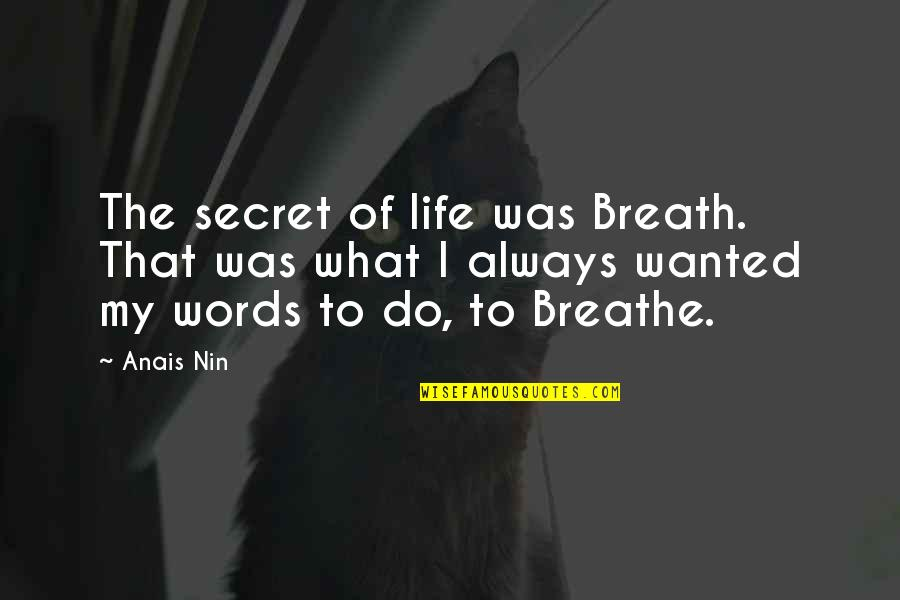 The Secret To Life Quotes By Anais Nin: The secret of life was Breath. That was