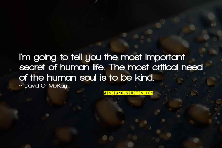 The Secret To Life Quotes By David O. McKay: I'm going to tell you the most important