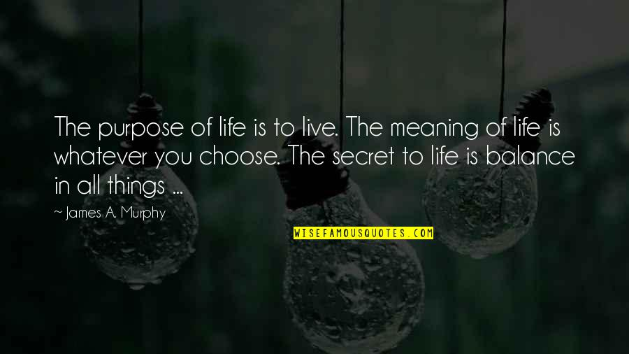 The Secret To Life Quotes By James A. Murphy: The purpose of life is to live. The