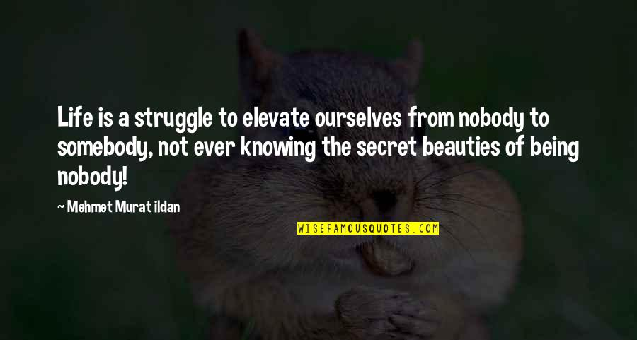 The Secret To Life Quotes By Mehmet Murat Ildan: Life is a struggle to elevate ourselves from