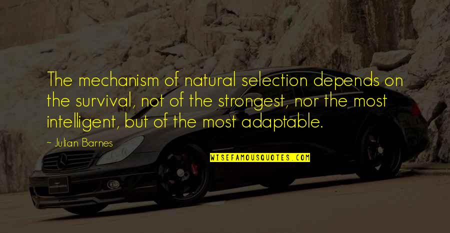 The Selection Quotes By Julian Barnes: The mechanism of natural selection depends on the