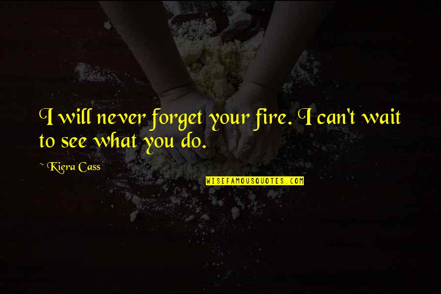 The Selection Quotes By Kiera Cass: I will never forget your fire. I can't