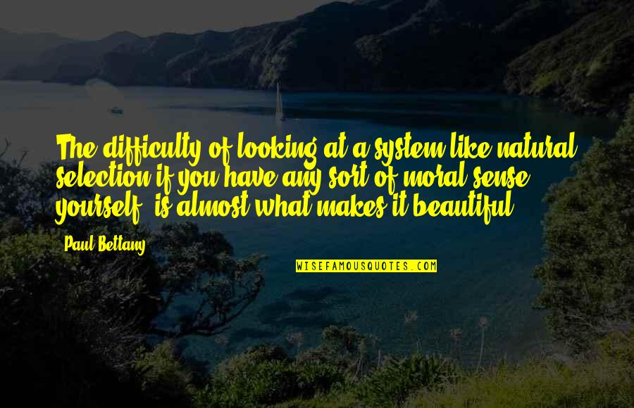 The Selection Quotes By Paul Bettany: The difficulty of looking at a system like