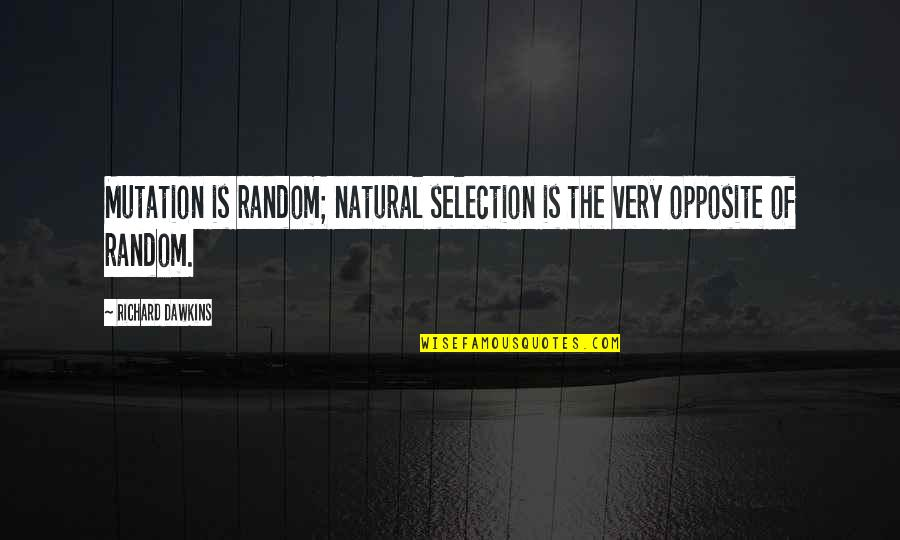 The Selection Quotes By Richard Dawkins: Mutation is random; natural selection is the very