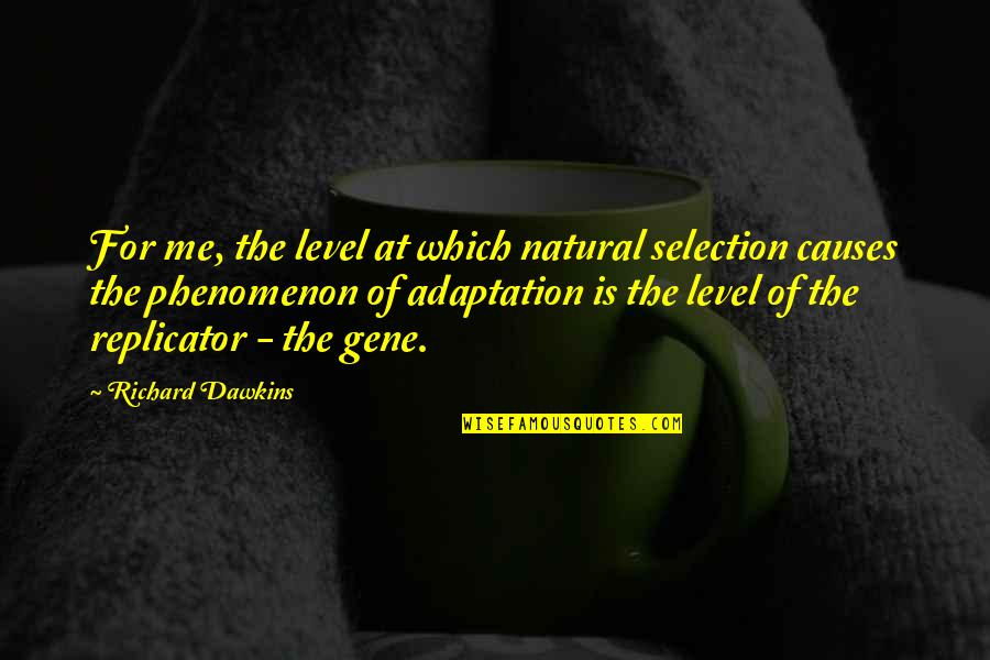 The Selection Quotes By Richard Dawkins: For me, the level at which natural selection