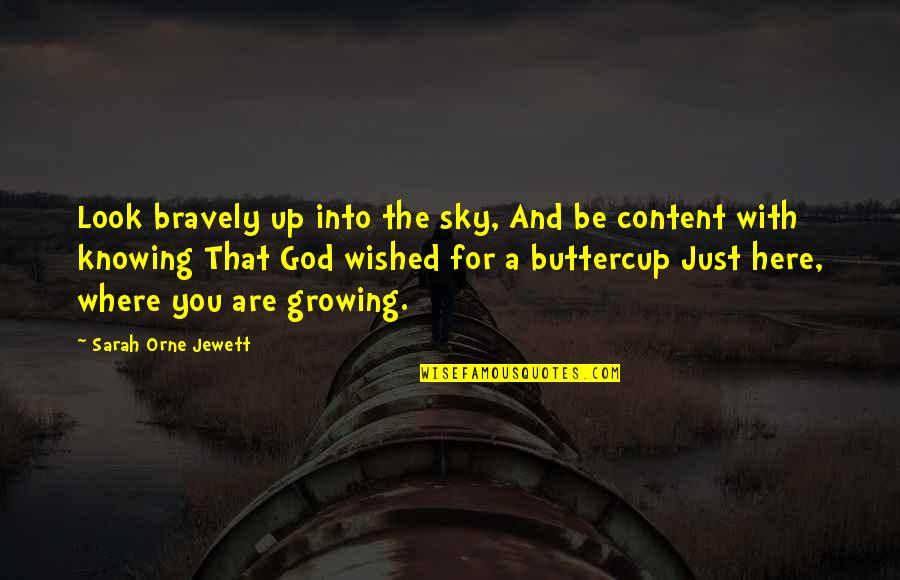 The Sky And God Quotes By Sarah Orne Jewett: Look bravely up into the sky, And be