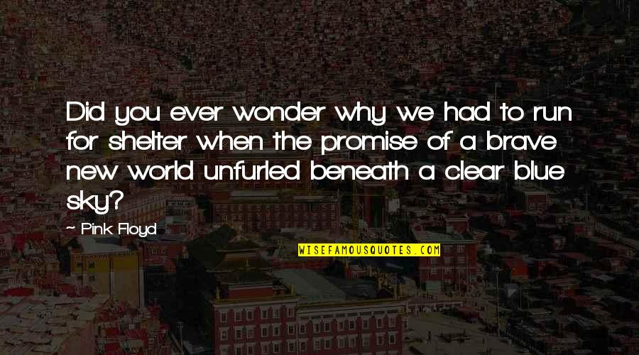 The Sky Quotes By Pink Floyd: Did you ever wonder why we had to