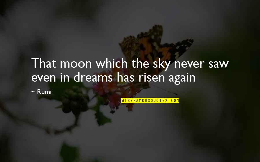 The Sky Quotes By Rumi: That moon which the sky never saw even