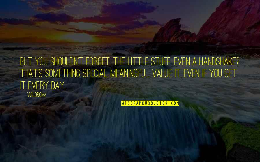 The Special Day Quotes By Wildbow: But you shouldn't forget. The little stuff. Even