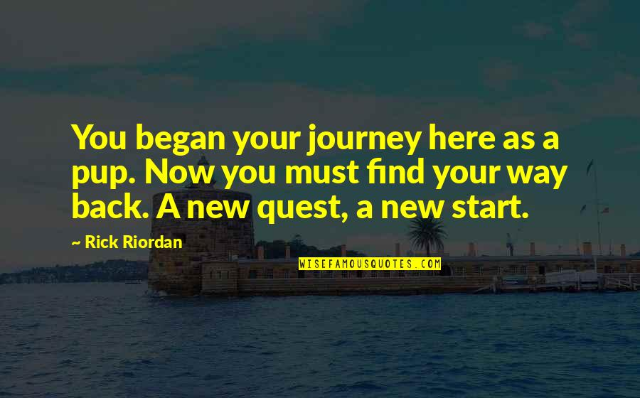The Story Of David Gale Quotes By Rick Riordan: You began your journey here as a pup.
