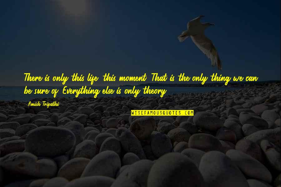 The Theory Of Everything Quotes By Amish Tripathi: There is only this life; this moment. That