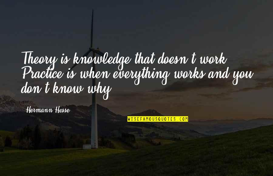 The Theory Of Everything Quotes By Hermann Hesse: Theory is knowledge that doesn't work. Practice is