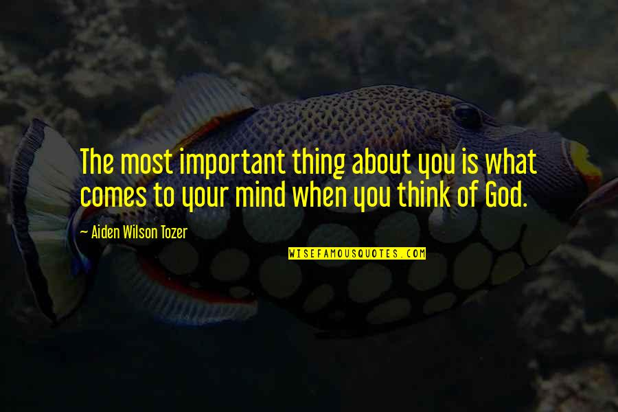 The Thinking Mind Quotes By Aiden Wilson Tozer: The most important thing about you is what