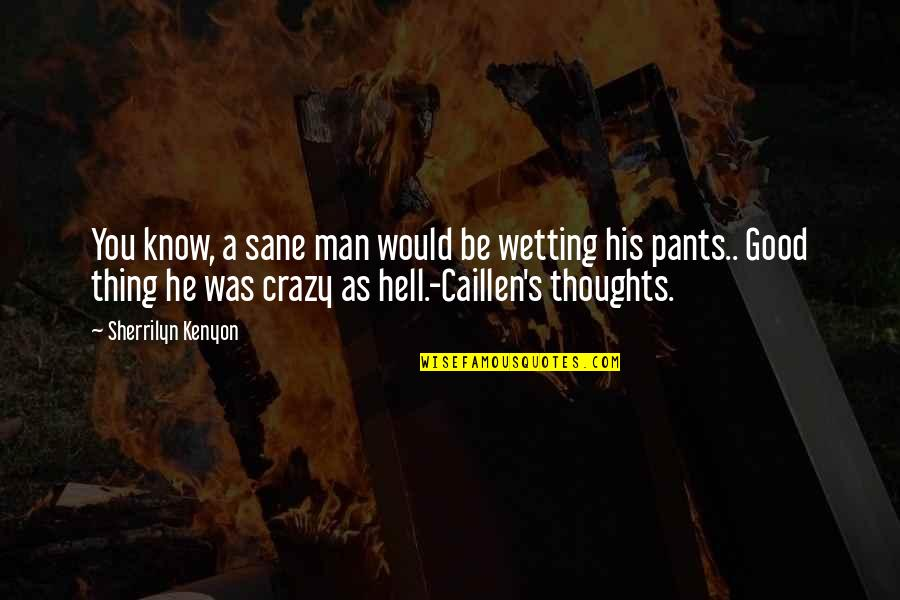 The Thoughts Of A Good Man Quotes By Sherrilyn Kenyon: You know, a sane man would be wetting