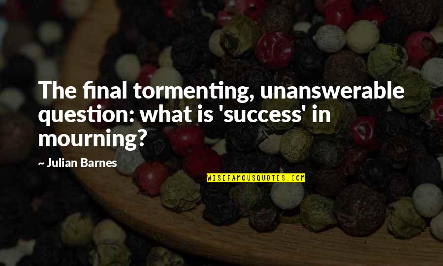 The Unanswerable Quotes By Julian Barnes: The final tormenting, unanswerable question: what is 'success'