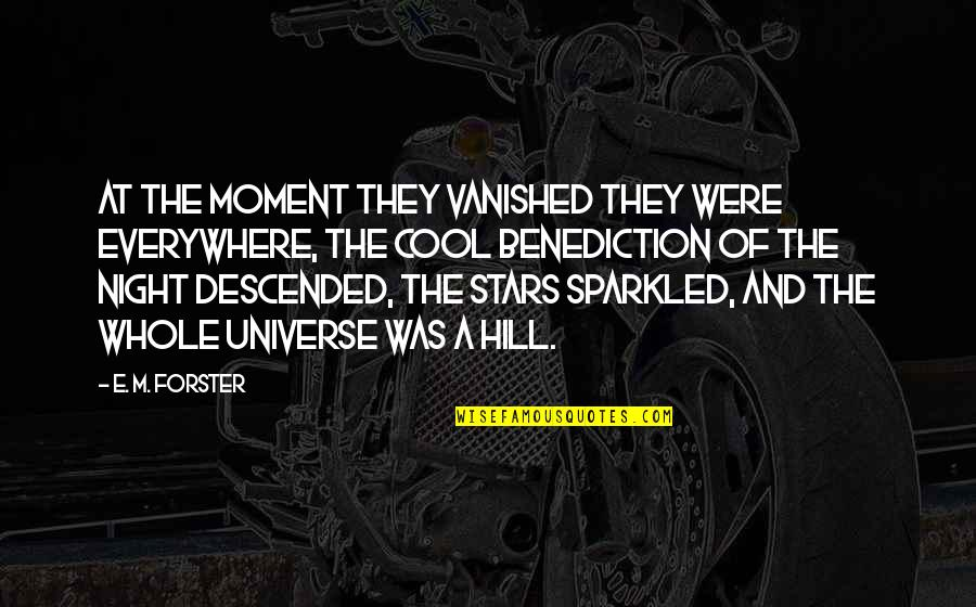 The Universe And Stars Quotes By E. M. Forster: At the moment they vanished they were everywhere,