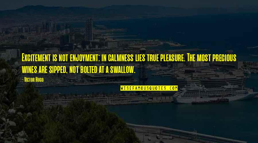 The Victor Quotes By Victor Hugo: Excitement is not enjoyment: in calmness lies true
