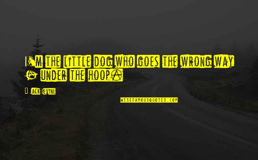 The Way I'm Quotes By Jack Levine: I'm the little dog who goes the wrong